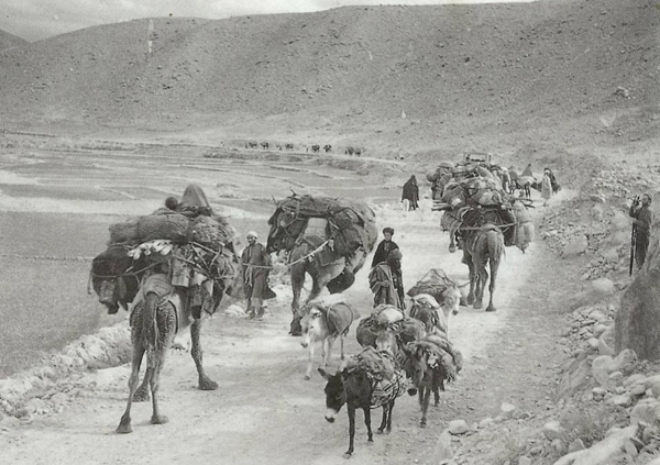 Simple How Does Mohammads Muslim World Differ After  Throughout History More People Living On The Arabian Peninsula Have Subsisted As Farmers And Sailors Than As Pastoral Nomads Exceptions To This Pattern Include Caravan Trading