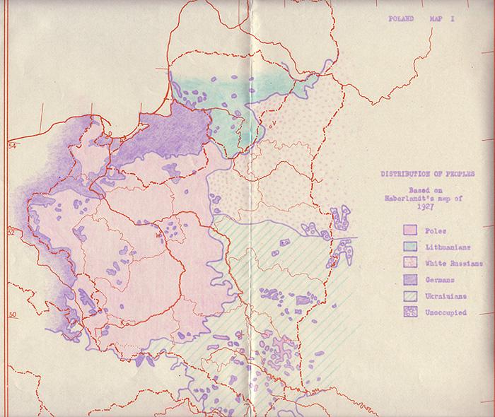 Ethnic map of East European region